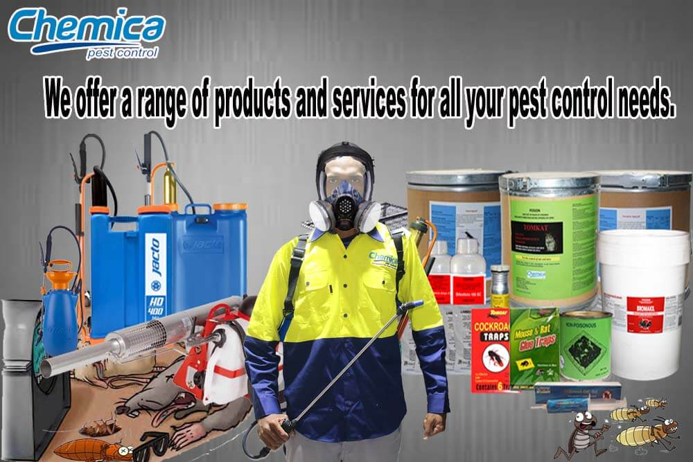 slide_pest goods and services (1)
